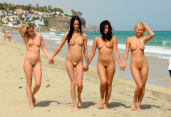 4 Girls Micro Bikini Smiling Beach Boobs Tits Nipples Sea Sexy Wallpaper