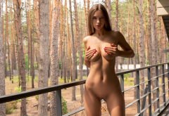 Alina Model Brunette Long Hair Big Tits Tits Boobs Handbra Pussy Shaved Pussy Outdoors Forest Tanned Wallpaper