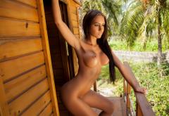 Vivien Mareeva Oiled Tanned Hot Brunette Tropics Palm Boobs Big Tits Nipples Wallpaper