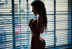 Window Tanned Naked Ass Back Wallpaper
